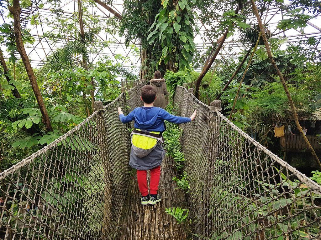 djursland denemarken randers regnskov