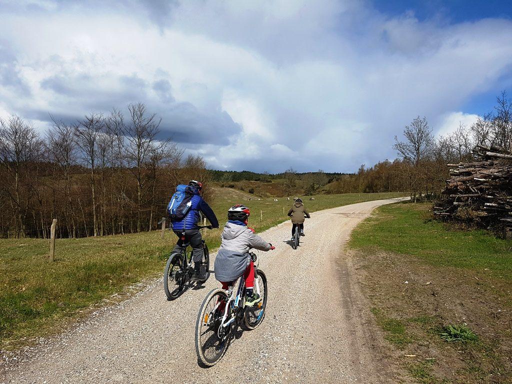 fietsen djursland denemarken mols bjerge