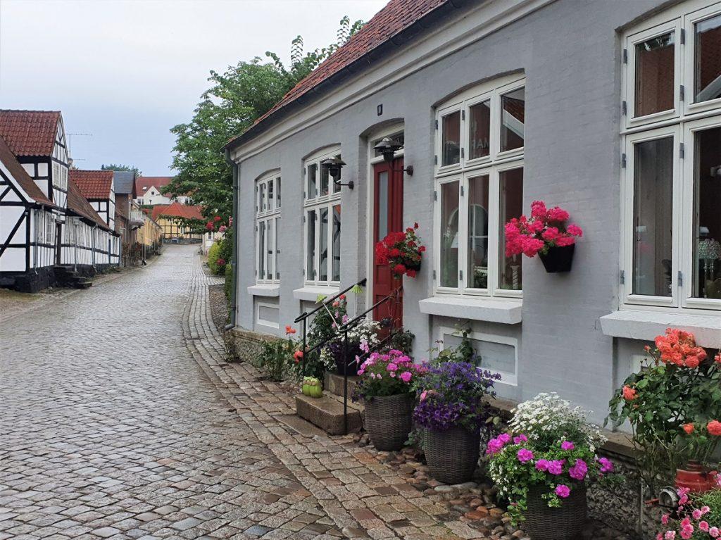 rozen in Mariager