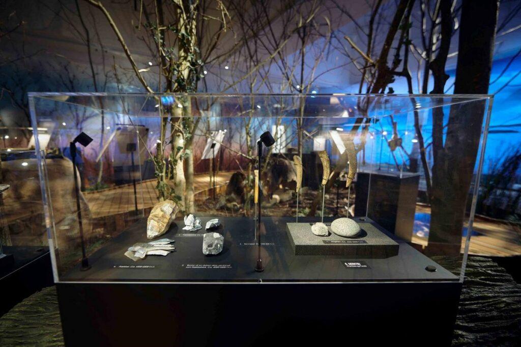 Museum Lolland