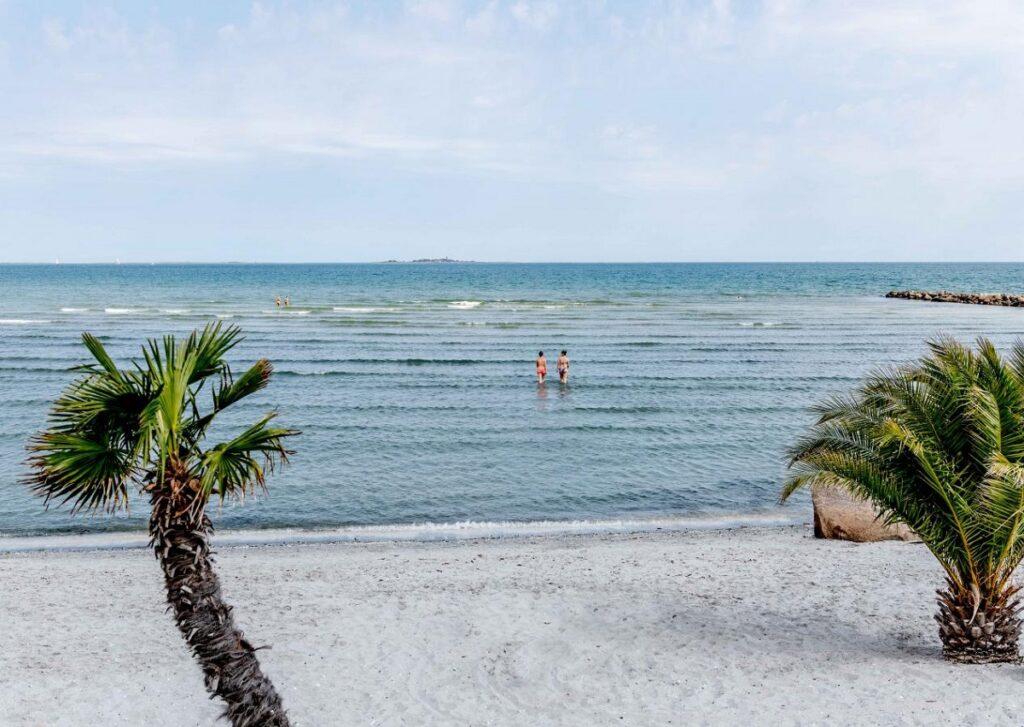 palmestranden frederikshaven